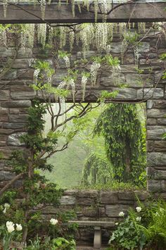 garden window + wisteria + bench