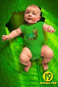weekly photo 19 - Pixar's A Bug's Life