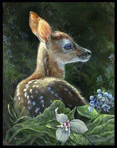 Wildlife Paintings, Wildlife Art, Animal Paintings, Animal Drawings, Deer Photos, Deer Pictures, Animals And Pets, Cute Animals, Vida Animal