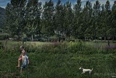 #kids #dog #forest