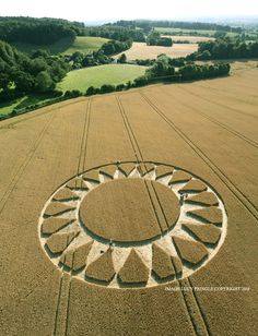 Crop Circle at Cley Hill, Nr Warminster, Wiltshire. Ancient Egyptian Art, Ancient Aliens, Ancient Greece, Ancient History, Crop Circles, Circle Art, Circle Design, Landscape Photography, Nature Photography