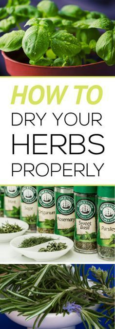 Easily learn how to harvest and dry your own herbs properly for the best flavor!                                                                                                                                                                                 More