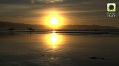 7 miles beach sunrise Australia
