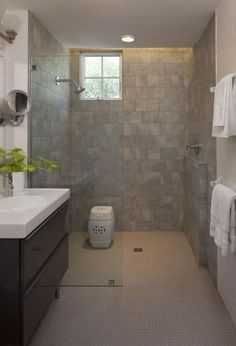 Walk in shower. I would take out the glass and put a tile 1/2 wall and add a larger window for more light. Make it wheelchair accessible