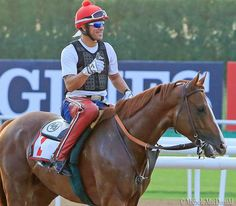 Here's how exercise rider Willie Delgado felt about California Chrome's gallop today at Medyan.