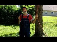 HOW TO TRIM TALL TREE LIMBS WITHOUT CLIMBING THE TREE ... Use a old Chainsaw chain and a rope... A great way to trim tree branches that are high up in a tree... Rope Chain Saw -  https://www.youtube.com/watch?v=z6uLlqVUGy0&index=79&list=PLU4DGNC_4MTLq8yObMevryP-v5oOy0qMr