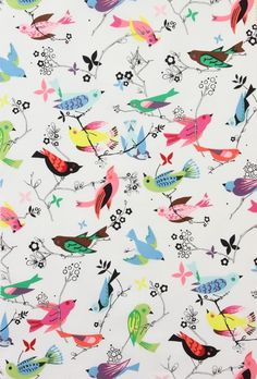 Colorful graphic birds