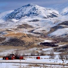 Winter scene in Island Park, Idaho.