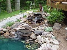 Love this. Going to attempt to make a small pond in our yard this year.  YAY