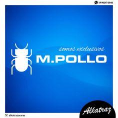 A M. Pollo é uma marca conceituada, que acompanha o homem em todos seus objetivos e realizações. Sabemos o quanto nosso público é exigente e movido pela qualidade e pelo bom gosto, tanto no modo de viver quanto no de vestir, por isso nos preocupamos em oferecer produtos que satisfaçam suas ambições. Somos exclusivos em Araras e logo mostraremos a nova coleção, venha conhecer a marca moderna do homem! 👊✌️ #alkatraz #mpollo #exclusivos #moda #homem #qualidade #araras