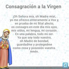 ¡Abandónate en las manos de Nuestra Madre la Virgen, con esta preciosa oración! Catholic Prayers, Beautiful Prayers, Religion, Faith, Let It Be, God, Truths, Followers, Holy Spirit Prayer