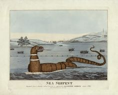 A sea serpent off Cape Ann!, 1817  A delightful and extremely rare engraving of a sea serpent sighted in 1817 off Gloucester, Massachusetts.  In August ... - Boston Rare Maps Inc - Google+