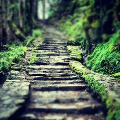 Torc Falls. Killarney Ireland.  #beautifulplace