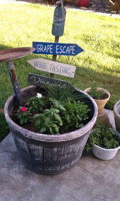 my summer herb garden..