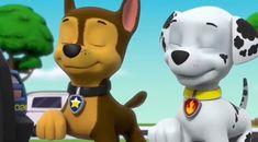 Los Paw Patrol, Paw Patrol Pups, Sweet Boyfriend, Pikachu, Pokemon, Marshall, Random Stuff, Nerd, Barbie