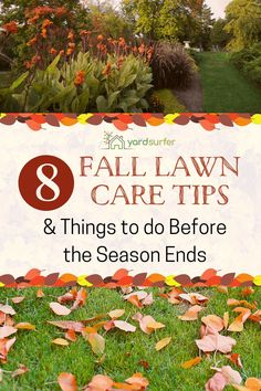 We get worried about our yard as the season changes. Here are the best fall lawn care tips to help you achieve that perfect, beautiful spring lawn.