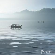 fogy boats