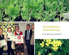 GenussGarten Auszeichnung für das Naturidyll Hotel Steinschalerhof - als erster Garten Österreichs! Hotels, Film, Stone Bowl, Pride, Tuesday, Landscape, Movie, Movies, Film Stock