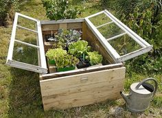 Vintage window cold frame greenhouse box