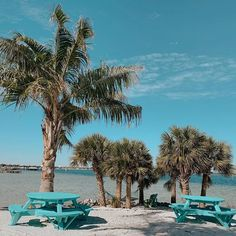 So many spots to sit and enjoy our waterfront paradise. Find your favorite vantage point, order a Watermelon Mojito and take it all in. Watermelon Mojito, Red Fish Blue Fish, Outdoor Dining, Outdoor Decor, Pensacola Beach, Backyard, Patio, White Sand Beach, The Good Place