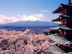 Japan...love that view