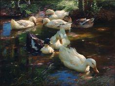 Alexander Koester - Seven ducks