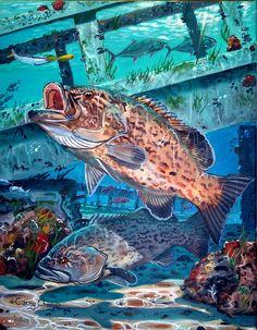 gag grouper art
