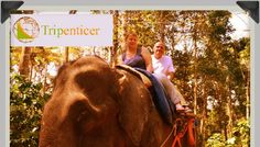Holidays in Kerala - Find complete list of Kerala tour and travel packages with available deals. Book Kerala holiday packages. For more details Visit Us Here : http://www.ecogreenkeralaholidays.com/home/kerala-holiday-packages