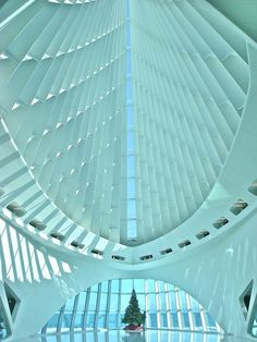 Milwaukee Art Museum-Santiago Calatrava. Photo by: Erblin Bucaliu