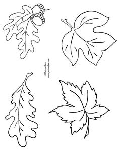 FREE Autumn Leaves ------------------------Scan a printout of these leaves, adjust size of leaves to desired sizes and print on green paper of your choice, cut out.