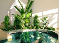 Resultado de imagen de decorar interiores con plantas