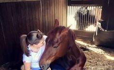 EQWO #Glücksmomente, 05. Dezember   Marina Tierwald  #glücksmoment #adventkalender #pferdeliebe #pferd #pferdefotografie Horses, Animals, December, Woodland Forest, Animais, Animales, Animaux, Animal, Horse