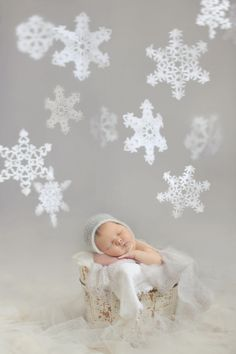Newborn photo by Cre