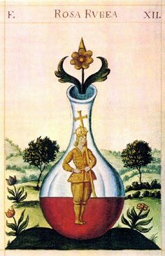 A symbolic homunculus, depicted in The Pretiosissimum Donum Dei ('The Most Precious Gift of God'), an important 15th-Century alchemical work by Georgius Aurach de Argentina