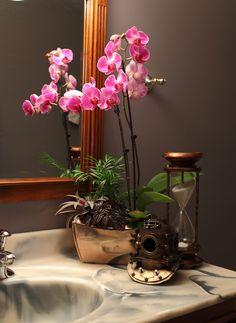 Best Plants That Suit Your Bathroom - Fresh Decor Ideas Orchid Planters, Orchids Garden, Indoor Flowers, Indoor Plants, Mini Orquideas, Lucky Bamboo, Bathroom Plants, Orchid Care, Cool Plants