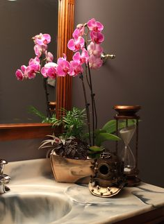 Just Add Ice Orchids are still simple in an orchid garden or orchid planter. 3 ice cubes per week per plant.