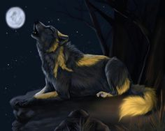 (Story part 1)He howled in pride. His son would be a father to his grandson. His name was White Fang. The elder of the pack. (Anyone wanna rp him and be him?)