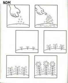 thema zaaien en planten on dover publications