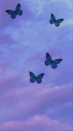 Wallpaper Sky, Blue Butterfly Wallpaper, Butterfly Wallpaper Iphone, Iphone Background Wallpaper, Iphone Wallpaper Glitter, Orange Butterfly, Screen Wallpaper, Wallpaper Quotes, Iphone Wallpaper Tumblr Aesthetic