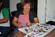 Periodismo sin Censura: Solidaridad, Quintana Roo refuerza medidas para el...