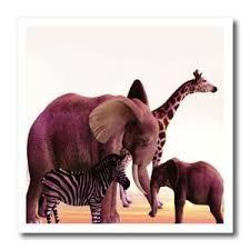 Image result for elephant giraffe zebra african wedding