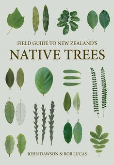Buy Field Guide to New Zealand's Native Trees by John Dawson at Mighty Ape NZ. If the monumental New Zealand's Native Trees has inspired you to venture into the outdoors to look more closely at our unique tree flora, this field g. Florida Native Plants, California Native Plants, California Wildflowers, Restaurants In Paris, Maori Tattoos, Key Tattoos, Skull Tattoos, Foot Tattoos, Circle Tattoos