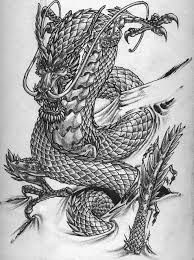 Chinese Dragon Sketch Sample for Tattoo, Dragon And Tiger Tattoo Dragon Tiger Tattoo, Dragon Tattoo For Women, Dragon Tattoo Designs, Chinese Dragon Drawing, Japanese Dragon Tattoos, Symbol Tattoos With Meaning, Symbolic Tattoos, Tattoo Symbols, Dragon Occidental