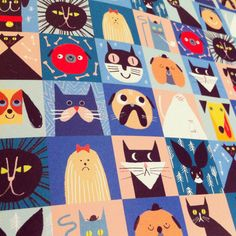 Rob Hodgson, Cats & Dogs (detail), wrapping paper for Urban Graphic
