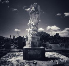Photo taken at Onehunga's Waikaraka Cemetery Cemetery, Statue Of Liberty, Mount Rushmore, Adventure, Mountains, Happy, Nature, Travel, Statue Of Liberty Facts