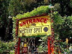 Mystery Spot. ALWAYS fun. 465 Mystery Spot Road, off Branciforte Drive. 831-423-8897