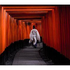 東京カメラ部 Editor's Choice:aino_hana_saku