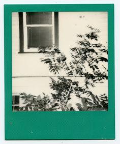 Polaroid: Three-Six-Six