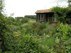 Naturnaher Garten MSG