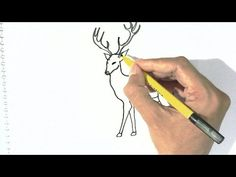 How to draw Deer in  easy steps for children, kids, beginners - YouTube
